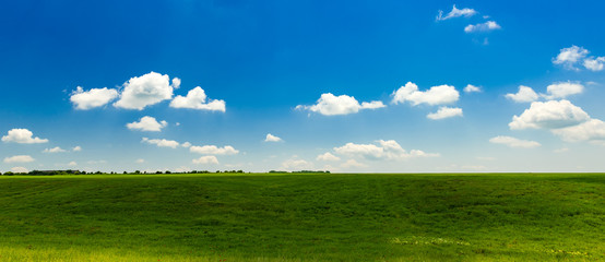 Panoramic view to green field with clouds in the blue sky Wall mural