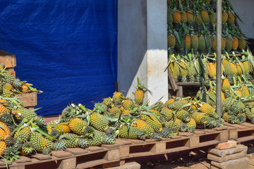 Sri Lanka pineapple stand