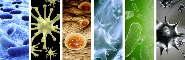 Set of vertical banners with pathogenic bacterias and viruses Wall mural