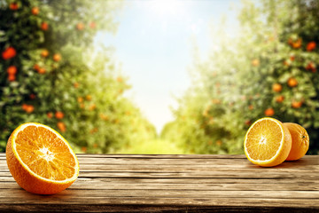 Fresh orange fruits on desk and summer landscape of orange garden with sun light.