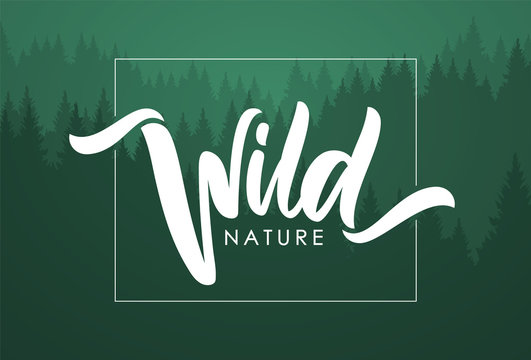 Handwritten calligraphic brush lettering composition of Wild Nature on green forest background.
