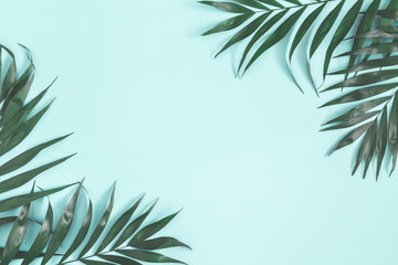 Summer composition. Palm leaves on pastel blue background. Summer concept. Flat lay, top view, copy space Wall mural