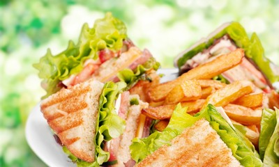 Grilled sandwiches with french fries on white plate
