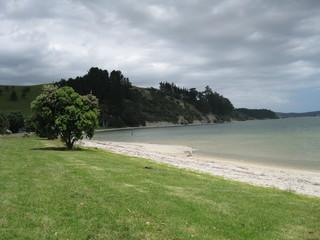Shoreline beach landscape in remote location