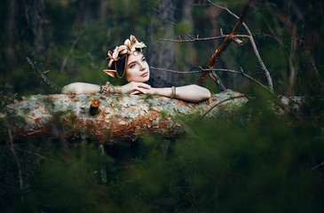 beautiful elf woman fabulous, fairy forest, famtasy young woman with long ears, long dark hair golden wreath crown on head Wall mural