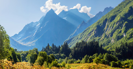 Morning in the mountains. Scenic valley in the Caucasus Mountains, Dombay. Summer greens and snow-capped peaks.  Wall mural