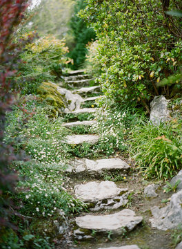 Stone staircase in woods