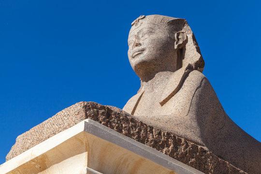 Ancient sphinx. Alexandria, Egypt