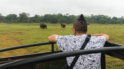 Tourist on Safari jeep watching wild Asian elephant herd gathering in the grassland in Minneriya National Park, Sri Lanka