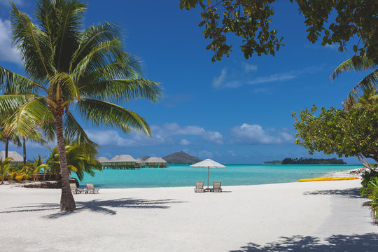 Tropical Beach Honeymoon Destination Paradise Scene