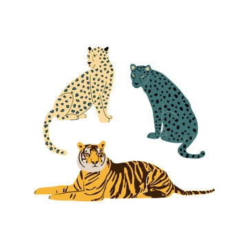 Leopards and tiger