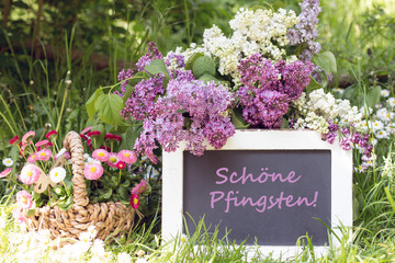 """Tafel mit Text """"Schöne Pfingsten"""" mit Flieder und Gänseblümchen im Garten"""