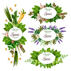 Herbs, spices and organic farm herbal seasonings