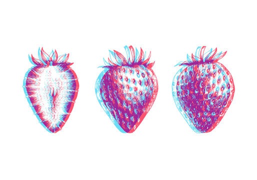 Hand drawn illustration of strawberry isolated on white background. Vector engraving fruit sketch. Anaglyph 3d stereo effect.
