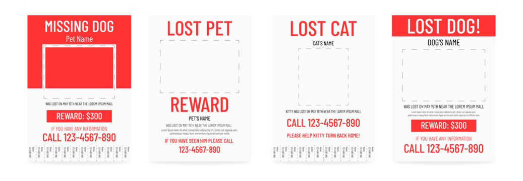 Lost pet poster template. Missing banner design.