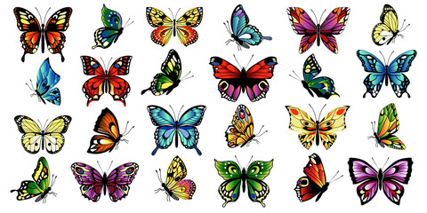 set multicolored butterflies