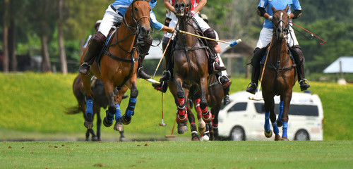 polo players are riding on horseback to grab the polo ball in a fierce speed.