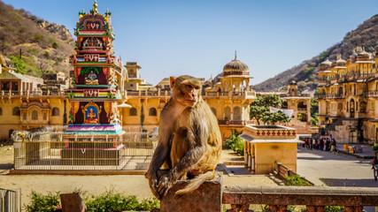 Jaipur rajasthan India  Fototapete