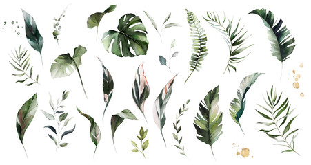 Wall Mural - set watercolor leaves - monstera, banana palm, fern. herbal illustration. Botanic tropic composition.  Exotic modern design