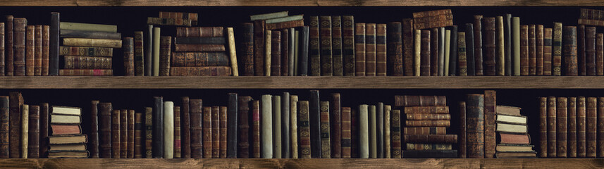 Collection of valuable ancient books on a bookshelf Wall mural