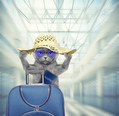 Cute cat waits at the airport with blue suitcase and passport. 3d render