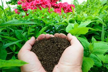 Kompost  -  Dünger für das grüne Beet