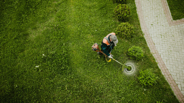 the lawnmower man mows the lawn the view from the top