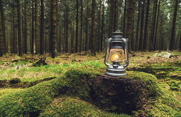 Gasoline lantern standing on a tree trunk in the deep forest, Hiker Concept image, copyspace for your individual text.