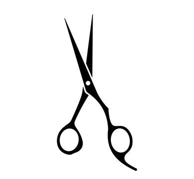 Professional hair scissor set. Vector