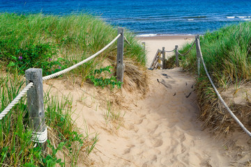 Path through the dunes to the beach in Greenwich, PEI National Park, Canada.