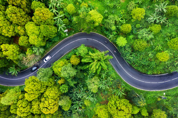 Aerial view on road in the forest. Highway throu the forest. View from a drone. Natural landscape in summer time from air. Travel - image