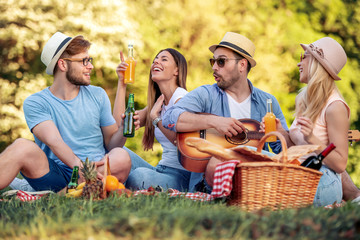 Group of friends on picnic with guitar Wall mural