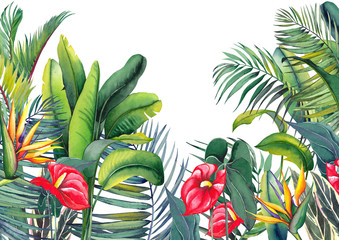 Tropical wallpaper with red flamingo flowers, exotic strelitzia, palm trees and banana leaves. Watercolor illustration on white background.
