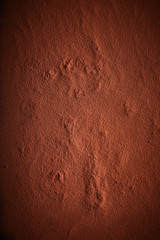 Background texture of cocoa or chocolate powder
