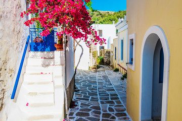 Fotobehang Smal steegje Scenic alley with beautiful pink bougainvillea flowers and yellow house walls. Colourful Greek street in Lefkes, Paros island