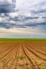 Plowed agricultural field and clouds in the sky