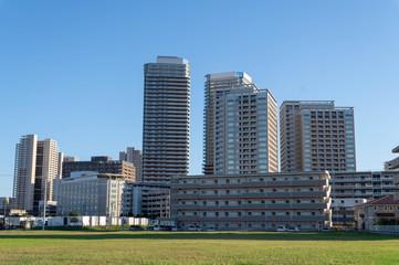 Fototapeta 千葉県 柏の葉キャンパス 郊外の風景 obraz