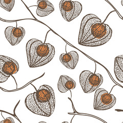 High detail physalis vector seamless pattern. Plant with orange berries.