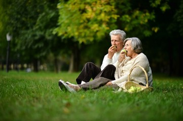 Portrait of elderly couple having a picnic in the summer