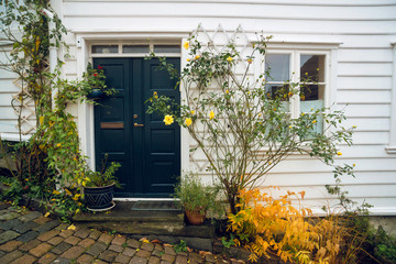 Beautiful taditional norwegian white house with blue front door and flower bush in Stavanger, Norway