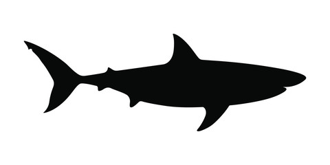 Photo sur Aluminium Dauphins Icon shark. Black silhouette shark isolated on white background. Sign shark. Sea predator symbol. Vector illustration