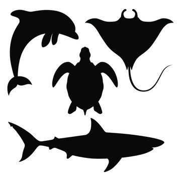 Sea animals set Icons. Black silhouettes dolphin, shark, turtle and manta ray isolated on white background. Sea life symbols. Vector illustration