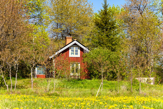 Typical red wooden house in the swedish province Småland on a sunny spring day.