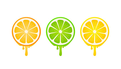 Banners with fresh citrus fruit on a white background. Vector stock illustration.