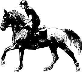 young horseman riding elegant horse sketch illustration - vector