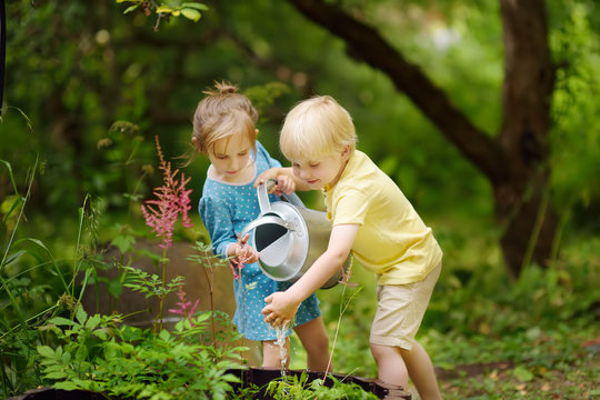 Cute little boy and girl watering plants in the garden at summer sunny day. Mommy little helpers.