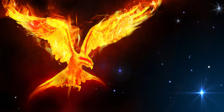 Phoenix journey in space art