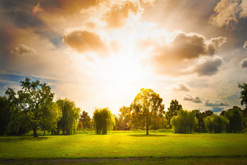 landscape with trees, blue sky an sunrays. very bright rays of the sun.