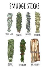 Fototapeta Sage smudge sticks hand-drawn set of doodles. Herb bundles collection obraz