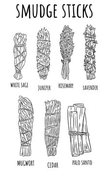 Sage smudge sticks hand-drawn set of sketch doodles. Herb bundles collection